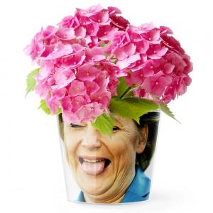 MyFacepot Merkel
