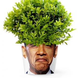MyFacepot Obama