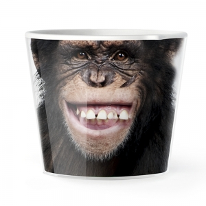 MyFacepot  Animal_Monkey