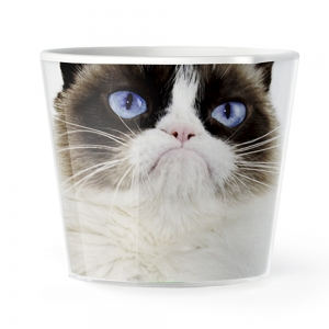 MyFacepot Animal_Groomy cat