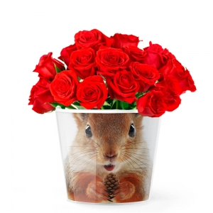 MyFacepot Animal_Squirrel