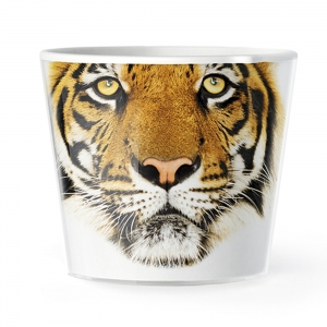 MyFacepot Tiger