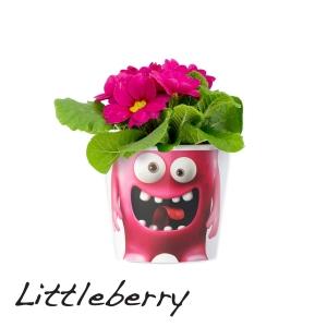 MyFacepot Plantmonster Little Berry