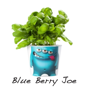MyFacepot Plantmonster Blueberry Joe
