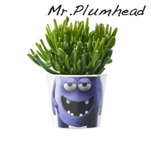 MyFacepot Plantmonster Mr. Plumhead